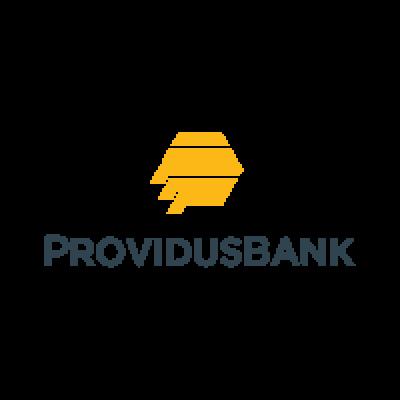 Providus Bank Logo